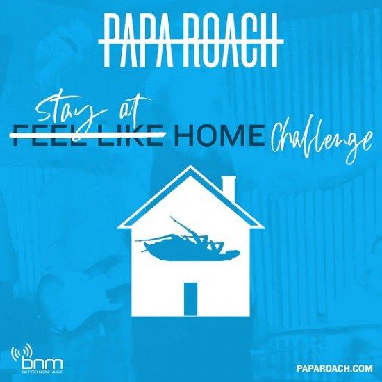 PAPA ROACH дома